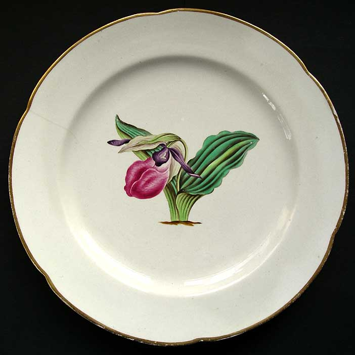 Derby Botanical Service Pattern Large Plate With Fine